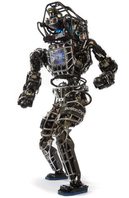 Varias copias del robot Atlas se proporcionan como equipo de gobierno amueblado para el programa de desafío DARPA robótica con entrega programada en el verano de 2013